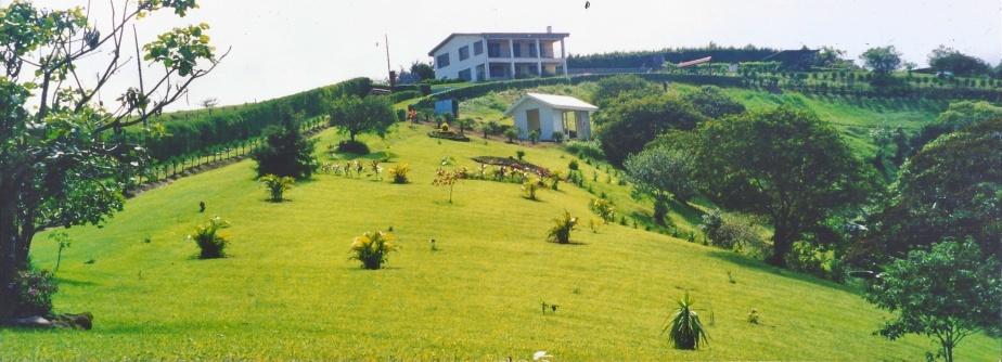 Costa Rica lawn